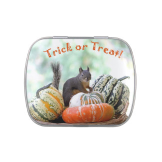 Halloween Squirrel Jelly Belly Candy Tin