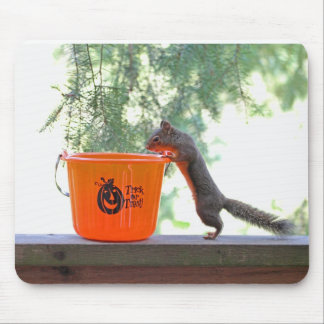 Halloween Squirrel Mouse Pad