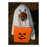 Halloween Treats with Ghost Dog and Goodie Bag Card