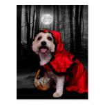 Halloween - Westie - Lady Postcards