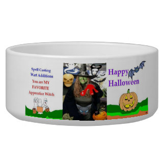 Halloween Witch Collector's Dog Pet Bowl