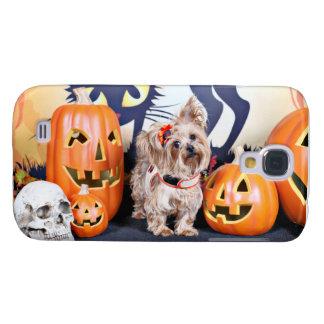 Halloween - Yorkie - Roxy