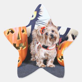 Halloween - Yorkie - Roxy Calcomanías Forma De Estrellas