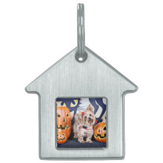 Halloween - Yorkie - Roxy Pet ID Tag