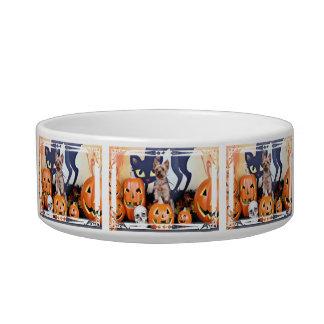 Halloween - Yorkie - Woody Cat Water Bowls