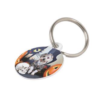 Halloween - YorkiePoo - Bentley Pet Tag