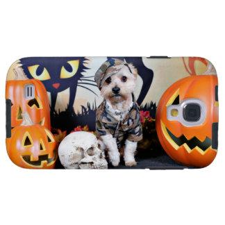 Halloween - YorkiePoo - Bentley