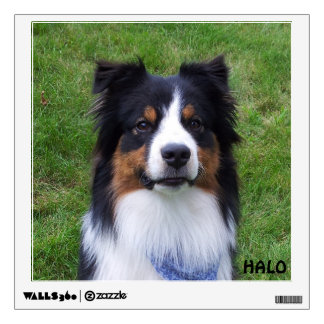 HALO the Aussie Dog Wall Decal