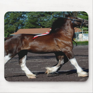 halter class for clydesdales mousepads