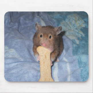 Ham-Bone Mouse Mats