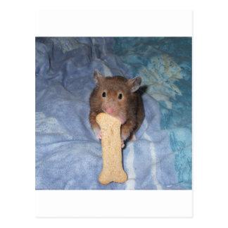 Ham-Bone Postcard