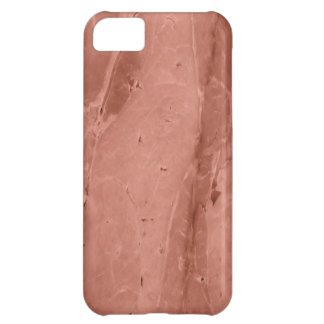 Ham Iphone 5 Case