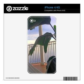 Hamaca en paraíso skins para iPhone 4