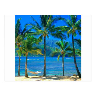 Hamaca Kauai Hawaii de la playa Postal
