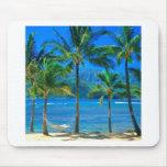 Hamaca Kauai Hawaii de la playa Alfombrillas De Raton