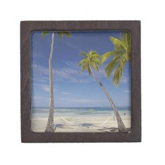 Hamaca y palmeras, centro turístico isleño de la p caja de recuerdo de calidad