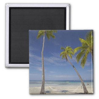 Hamaca y palmeras, centro turístico isleño de la p imán de frigorifico