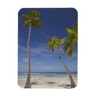 Hamaca y palmeras, centro turístico isleño de la p imán de vinilo