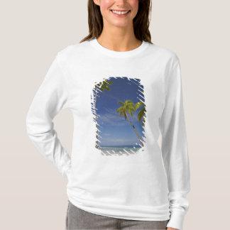 Hamaca y palmeras, centro turístico isleño de la playera
