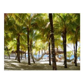 Hamaca y palmeras postales
