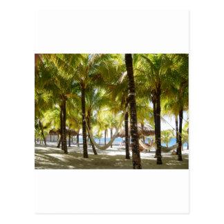 Hamaca y palmeras tarjeta postal