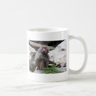 Hamadryas Baboon Coffee Mug
