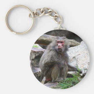 Hamadryas Baboon Keychain