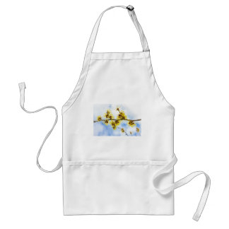 Hamamelis mollis with yellow flowers and blue sky adult apron