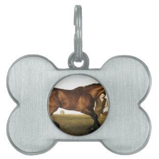 Hambletonian de George Stubbs Placas De Nombre De Mascota