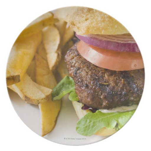 Hamburger and French Fries Dinner Plates