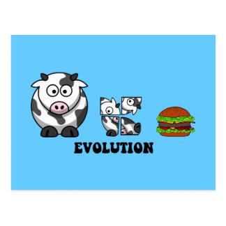 hamburger evolution postcard
