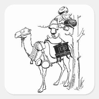 Hamel's Camel Limerick Square Sticker