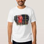 HAMILTON, CANADA - MAY 19:  Brodie Merrill #17 3 T Shirt