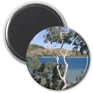 Hamilton Island Magnets