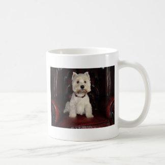 Hamish 11 taza de café