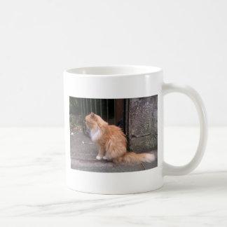 Hamish McHamish the Famous St Andrews Cat Coffee Mug