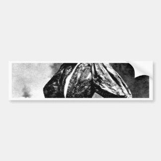 hamlet william shakespeare sarah baird 1899 skull bumper sticker