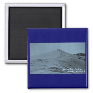 Hamlin Lake Sand Dunes, Michigan Magnets