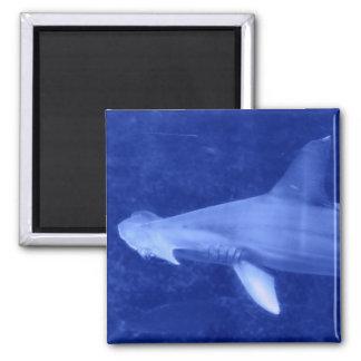 Hammerhead Shark Magnet Refrigerator Magnet