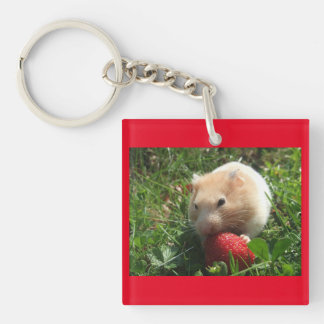 Hammies With Strawberries Keychain
