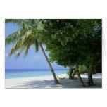 Hammock and Palm Tree Card