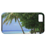 Hammock and Palm Tree iPhone SE/5/5s Case