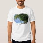 Hammock and Palm Tree Tee Shirt
