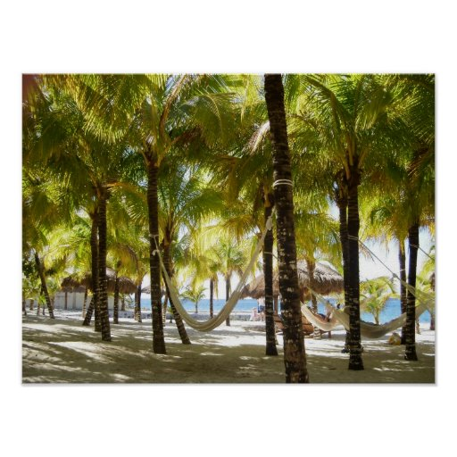 Hammock and palm trees by the ocean Poster