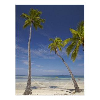 Hammock and palm trees, Plantation Island Resort Postcard