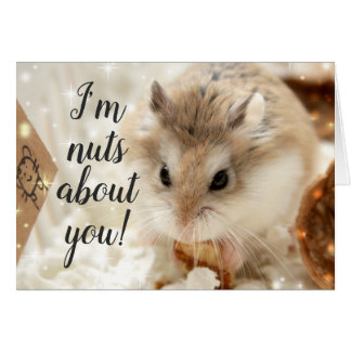 Hammyville - Hamster Nuts About You Card