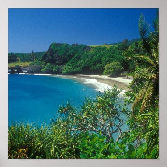 Hamoa Beach Hana Maui Poster