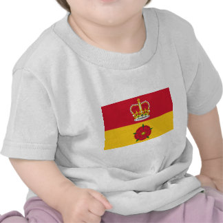 Hampshire United Arab Emirates Camiseta