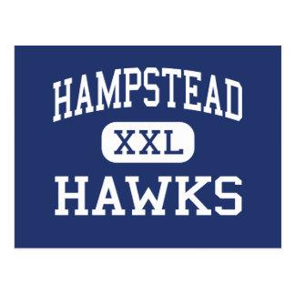 Hampstead Hawks Middle Hampstead Postcard