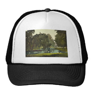 Hampton Court Park, London and suburbs, England cl Hat